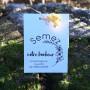 mariage - sachets de graines à semer - papier blanc -